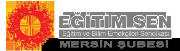 www.mersinegitimsen.org.tr